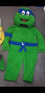 Mascot costume Ninja Turtle