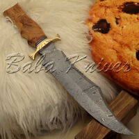 BEAUTIFUL CUSTOM HAND MADE DAMASCUS STEEL HUNTING BOWIE KNIFE | OLIVE WOOD HAND