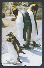 #920.590 Blank Back Swap Cards -MINT- Penguins