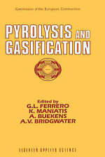 Pyrolysis and Gasification by