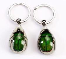 PAIR GREEN BEETLE GLOW LUCITE KEYRING KEYCHAIN INSECT JEWELRY TAXIDERMY GF