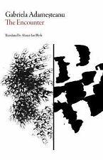 Romanian Literature: The Encounter by Gabriela Adamesteanu (2016, Paperback)