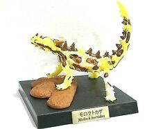 Japan Kaiyodo Moloch Thorny Devil Australian Lizard Dragon Mini Realistic Figure