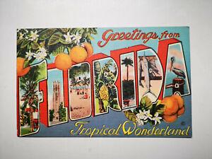 Florida USA Greetings from Florida Tropical Wonderland Linen Postcard, S77743