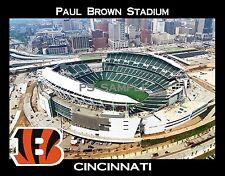 Cincinnati - PAUL BROWN STADIUM - Bengals - Flexible Fridge Magnet