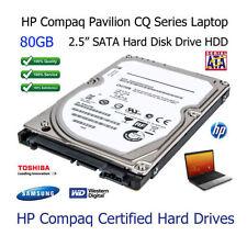 Hard disk interni SATA per 40GB