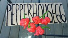Carolina Reaper Hot Pepper, 10 seeds
