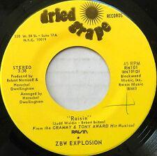 ZBW EXPLOSION 45 Raisin / Runnin' To Meet the Man DRIED GRAPE Disco #C710