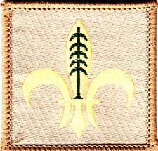 Boy Scout Badge Membership HAITI