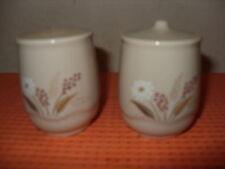 VINTAGE Poole Pottery Daisy modello CONDIMENTO Set sale & pepe vasi stile Forma