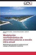 Modelacion Morfodinamica de Desembocaduras a Escala Intra-Anual by Alvarez Silva