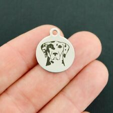 Catahoula Leopard Dog Stainless Steel Charms - Dog Breed - Bfs3849