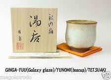 o5904,Japanese,TETSUAKI NAKAO, Winter Galaxy glaze teacup.