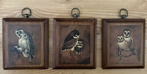Three Hanging Pictures Of Owls, Wood, Vintage