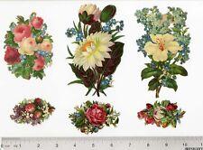 Flowers Roses Water Lily 6 Victorian Die Cut Scrap 1880's Hibiscus