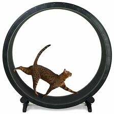 Cat Exercise Wheel - Black