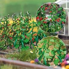 Busch Cucumber & Tomato Plants 1214 HO Scale