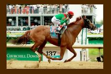 ANIMAL KINGDOM - USA 2011 Kentucky Derby winner modern Digital Photo Postcard