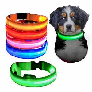LED Light Up Dog Collar USB Rechargeable Pet Night Safety Adjustable Leash Brigh