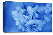 FLORAL FLOWER ART Picture Blue Grey White Spring Blossom Canvas Wall Large