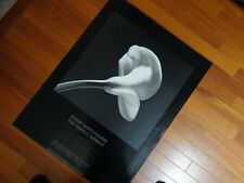 MAPPLETHORPE CALLA LILY EXHIBITION THE PERFECT MOMENT 1990