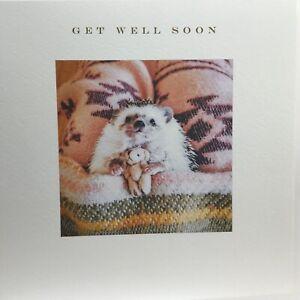 Beautiful Susan O'Hanlon Get Well Soon Card With Hedgehog Cuddling Teddy