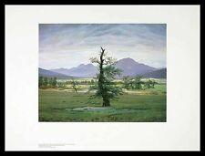 Caspar David Friedrich Der einsame Baum Poster Bild Kunstdruck & Rahmen 60x80cm