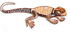 Lizard - Salamander - Amphibian - Embroidered Iron On Patch - School Crafts