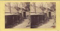 Vista un Pollaio Foto Amateur Insolito Stereo Vintage Albumina Ca 1870