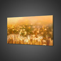 DANDELION FLOWERS FIELD CANVAS PICTURE PRINT WALL ART HOME DECOR FREE DELIVERY