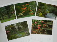 Set of 5 POSTER Jardin flowers 42 cm