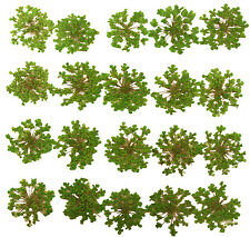 pressed flowers, green lace flowers 20pieces for art craft card making