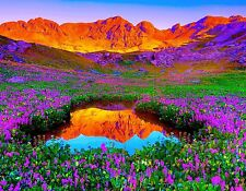 COLORFUL MOUNTAIN MEADOW FLOWERS  MOUSE PAD  IMAGE FABRIC TOP RUBBER BACKED