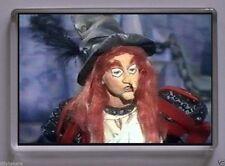 TV & Celebrity Plastic Decorative Fridge Magnets