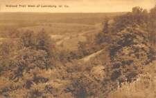 Lewisburg West Virginia Midland Trail West Scenic View Antique Postcard K15847