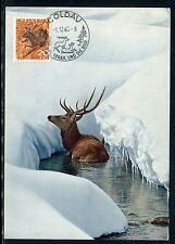 Suisse - Carte Maximum 1965 - Cerf