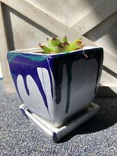 Handpainted Flower Pot