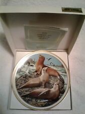 Lenox American Wildlife Collector Plate by Norman Adams Sea Lions with seagulls