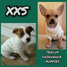XXS Chihuahua Teacup Puppy Coat Pet Dog Clothes Clothing Stretch to XS Yorkie UK