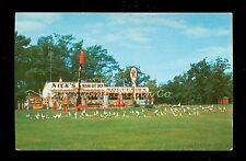 1950's Chrome Postcard Nick's Indian Gift Shop Onamia MN Old Gas Pumps B514
