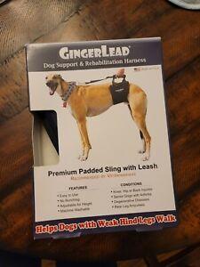 Tall - Male GingerLead Dog Support & Rehabilitation Harnesses Padded USA Leash