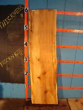 """#9228   1 1/2"""" THICK  black line spalted maple live edge slab"""