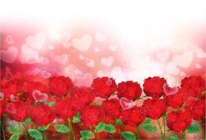 7x5FT Valentine'S Day Rose Flower Vinyl Backdrop Photo Prop Background