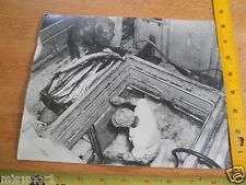 1950's lot of 2 Educational photos Fishing industry Los Angeles 8x10 tuna docks