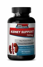 Kidney Cleanse - Kidney Support 700mg - KIDNEY DETOX, FLUSH SUPPLEMENTS 1B