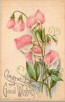 Vintage Early 1900's Sandford Card Co Congratulations Postcard UNPOSTED