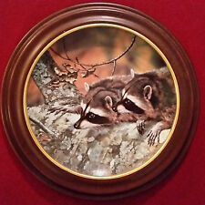 """Bradex """"Fascination"""" Our Woodland Friends By Carl Brenders #7504 A"""