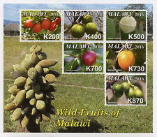 Malawi 2016 MNH Wild Fruits of Malawi 6v M/S Trees Plants Nature Stamps