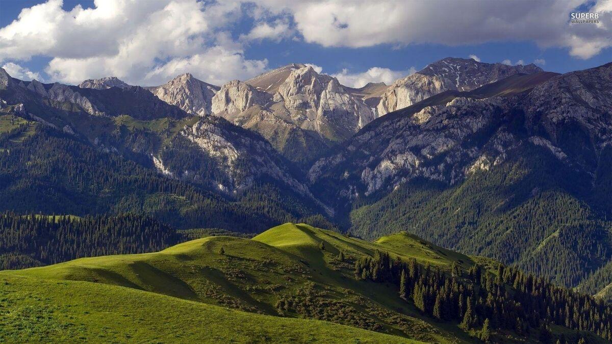 MOUNTAIN BLUE COLLECTABLES