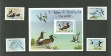Antigua and Barbuda Sea Birds   MNH